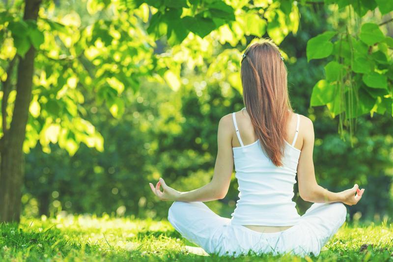 Le Green Yoga