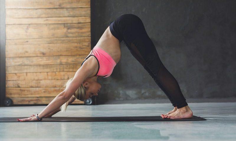 Yoga pose animals
