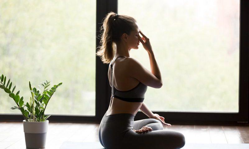 Le Yoga Nadi Shuddhi
