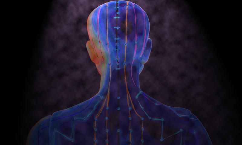 Les méridiens du corps : une science orientale traditionnelle