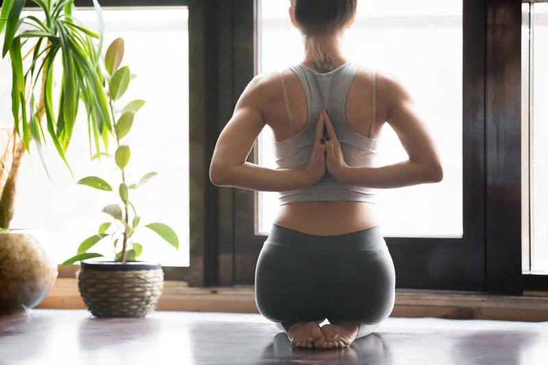Quelles plantes dans mon studio de yoga ?